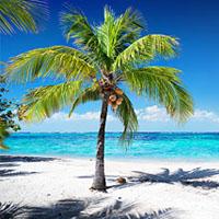Ostrov Roatán je tropický ráj
